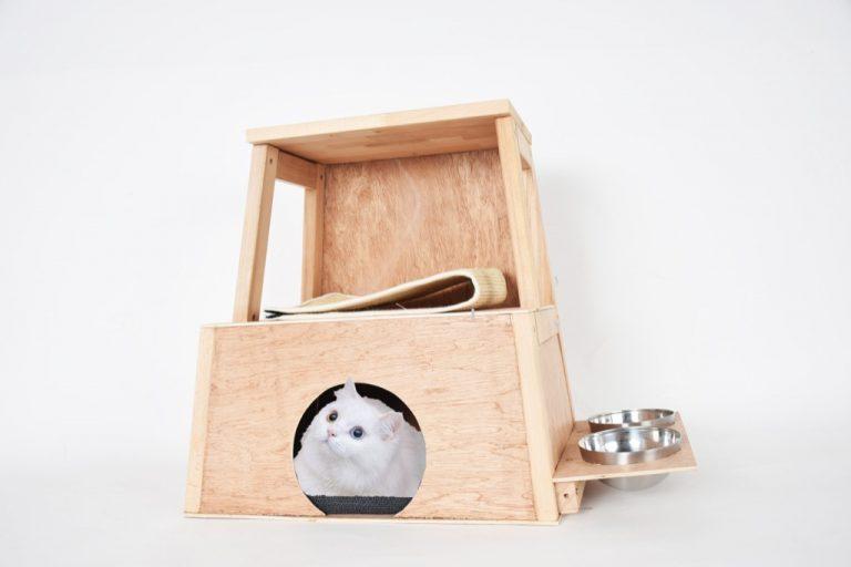 cat hut 5