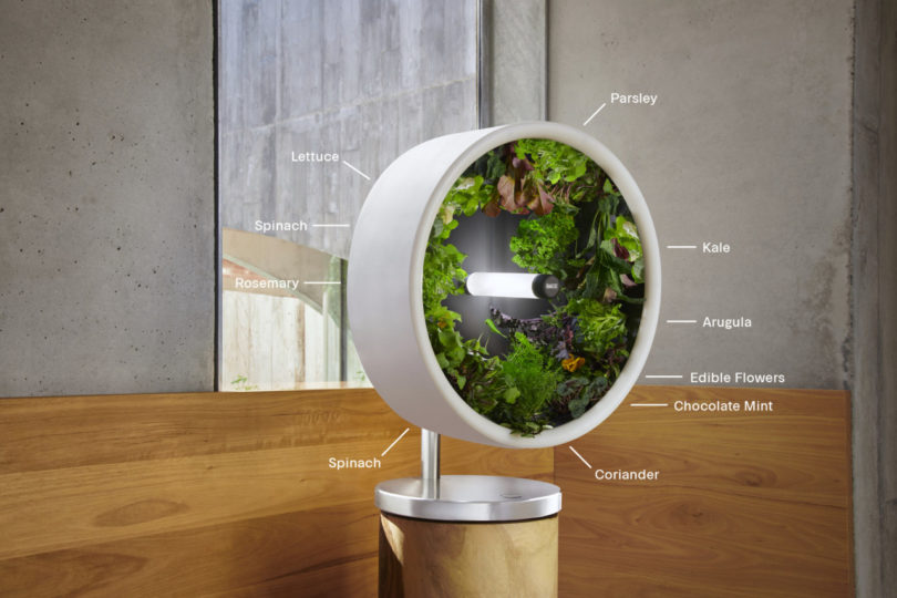 The Rotofarm Is a NASA-Inspired, Sculptural Hydroponic System Best Children's Lighting & Home Decor Online Store