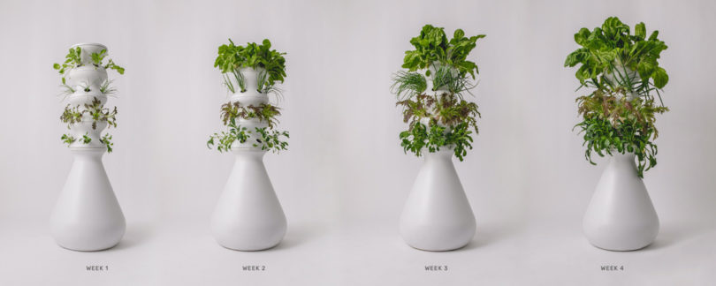 Lettuce Grow Has a Plug and Play Farmstand That Automates Gardening Best Children's Lighting & Home Decor Online Store
