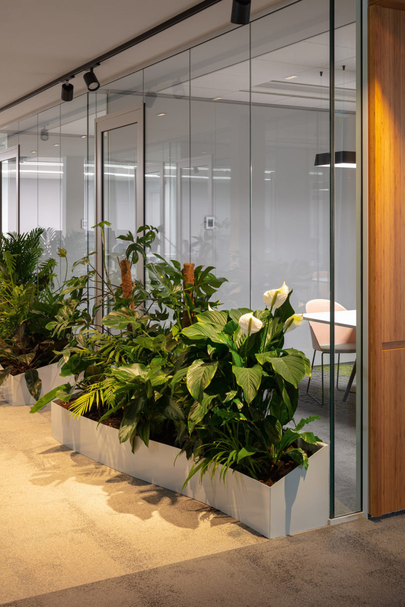 Arper Outfits The Cbre Group'S New Office In Amsterdam
