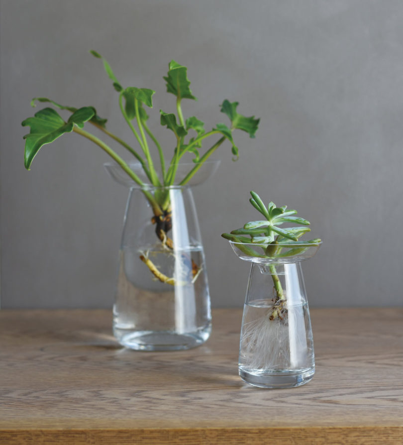 10 Modern Vases to Hold Everything From a Stem to a Bouquet Best Children's Lighting & Home Decor Online Store