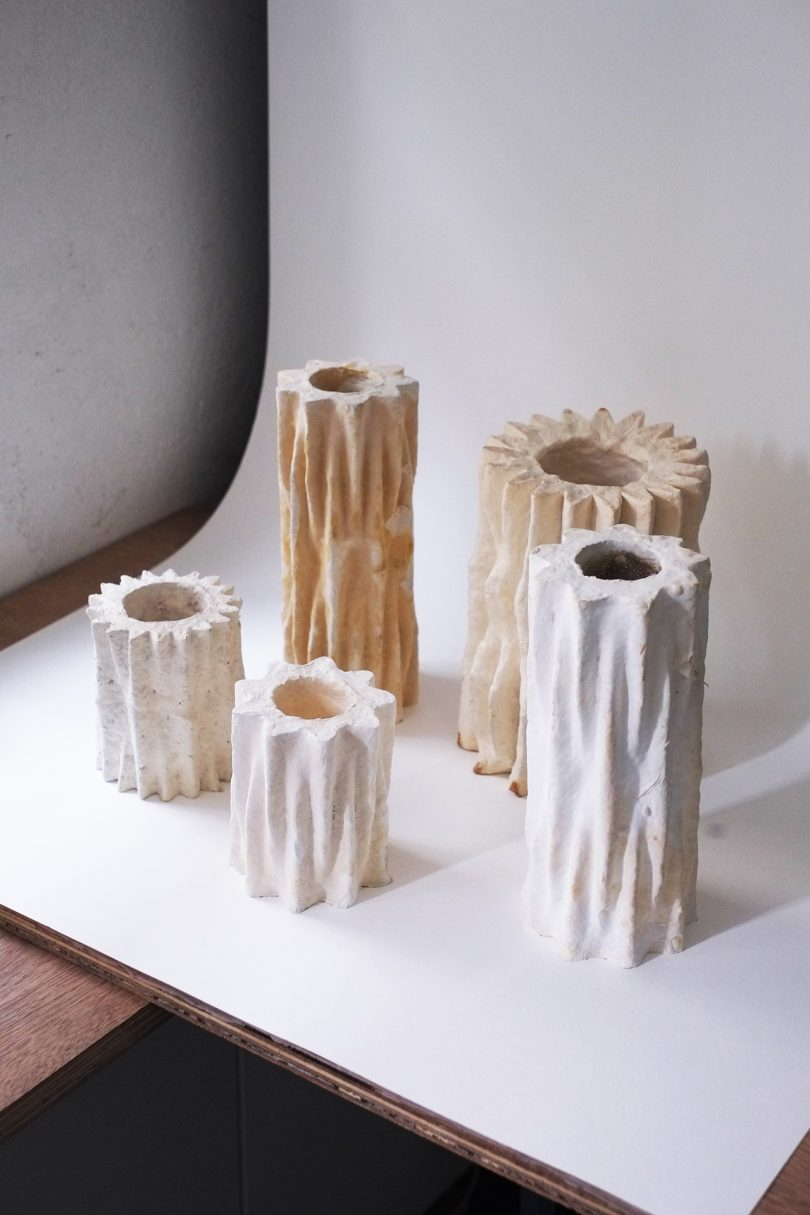 Objects From Nature Are Made From Living Organisms