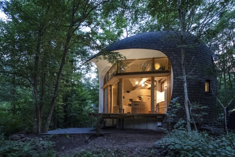 A Tiny House Shaped Like A Shell In Japan Blends Into Its Forest Surroundings
