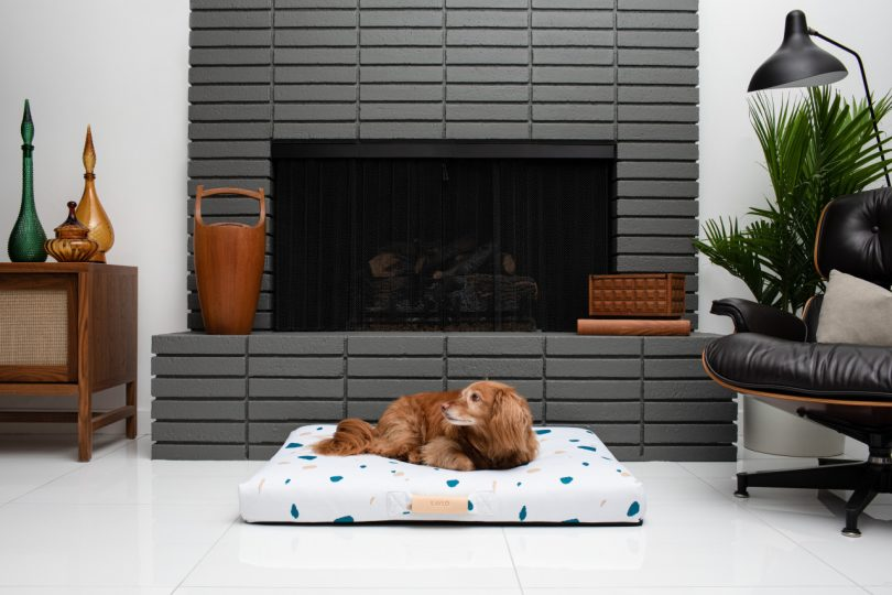 Dog on white dog bed in front of fireplace