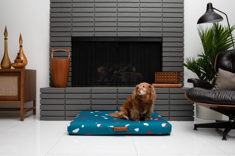 Laylo Pets Launch New Modern Dog Beds Inspired by Italian Terrazzo Best Children's Lighting & Home Decor Online Store