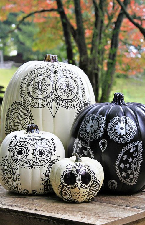 black and white pumpkins with various owls painted on them are very stylish and whimsical