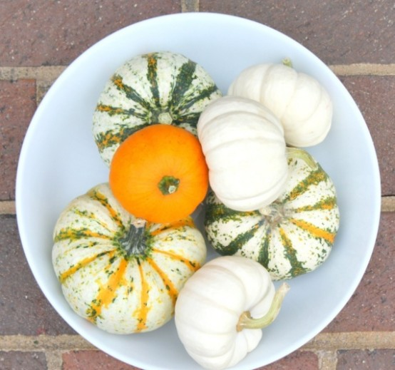 a bowl with natural and non-painted pumpkins is a cool fall centerpiece or just decoration