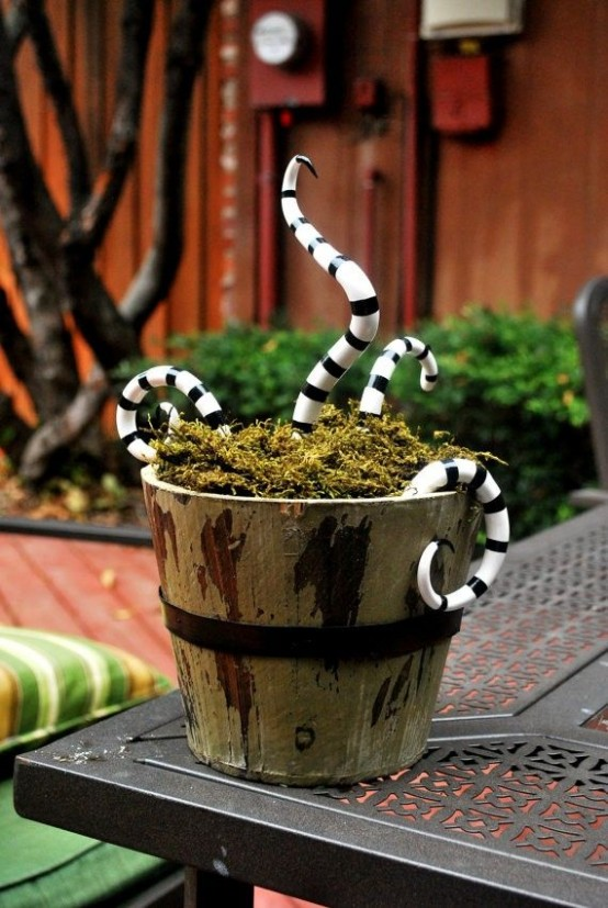 an old bucket with moss and striped snakes is inspired by Nightmare Before Christmas