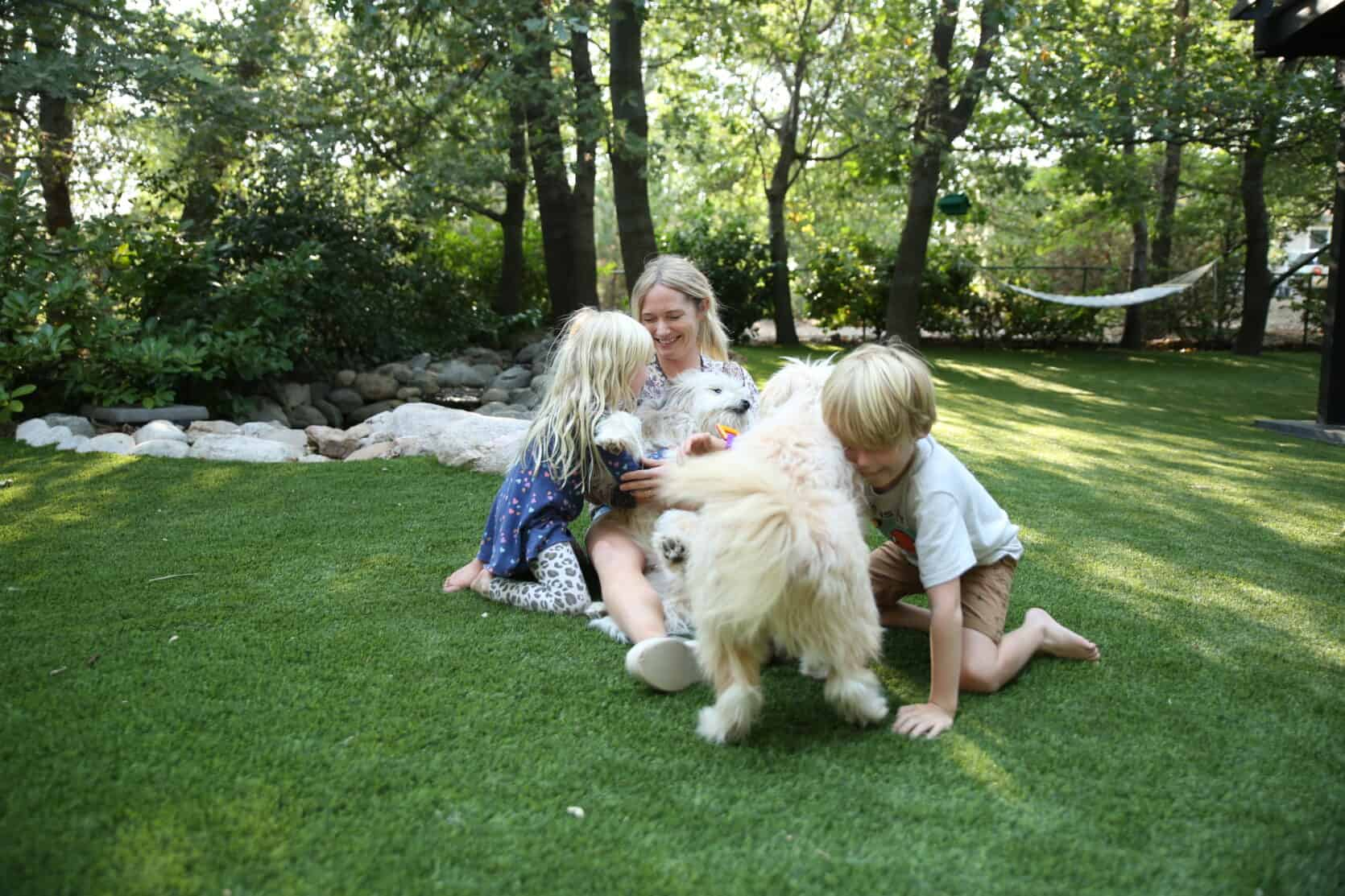 """All The """"Hows"""", """"Whys"""" And """"How Much's"""" Of The Turf At The Mountain House + Introducing My Landscape Designer - Brian Henderson Best Children's Lighting & Home Decor Online Store"""