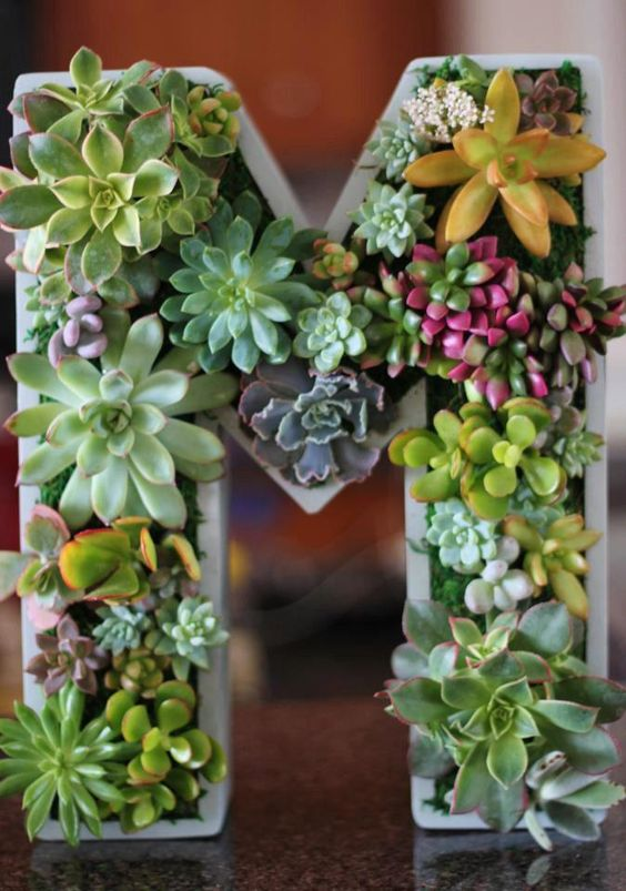 a white monogram with succulents of various kinds is a modern and fresh decoration, can be used for any events
