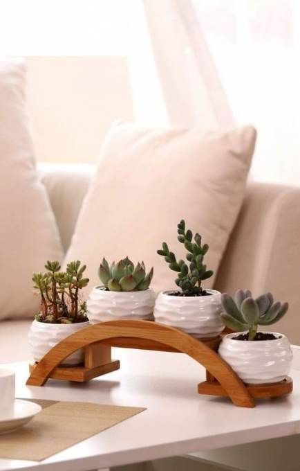 an arched wooden shelf with white textural planters and succulents in them is a stylish idea to rock
