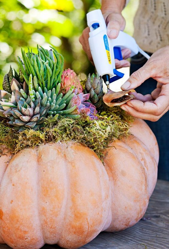 a whitewashed pumpkin with moss and succulents is a gorgeous outdoor decoration for the fall