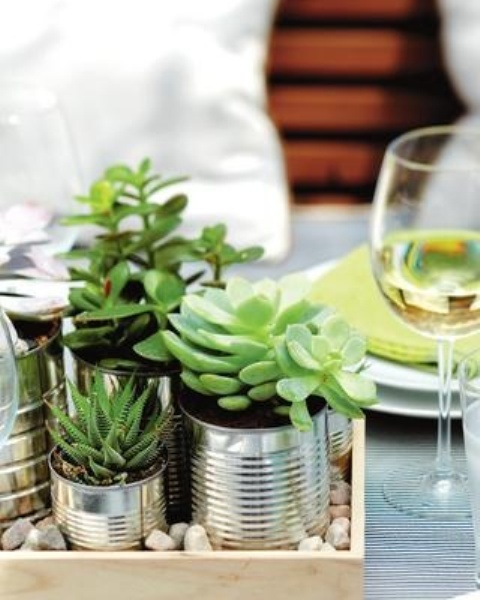 a tray with pebbles and succulents in tin cans is a very stylish decoration with a rustic and industrial feel, can be used as a centerpiece