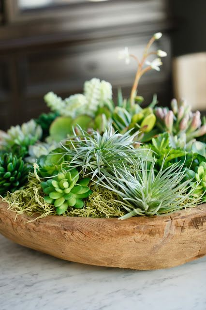 a wooden bowl with moss, hay and succulents plus some blooms is a stylish centerpiece with a strong natural feel