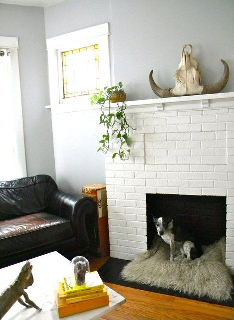 a white faux brick fireplace with a cozy fuzzy dog bed inside it is a great way to use a non-working fireplace