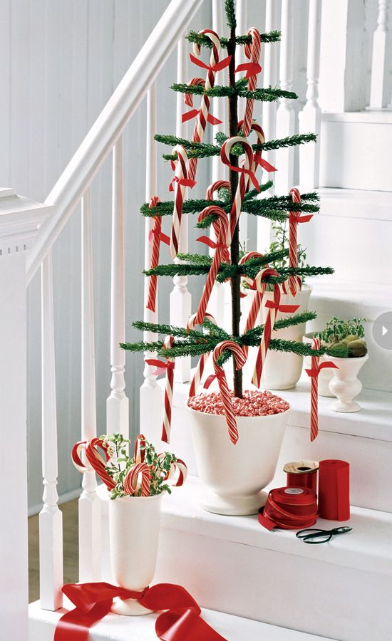 a potted Christmas tree with candy canes and a vase with greenery and candy canes will make your space look festive and fun