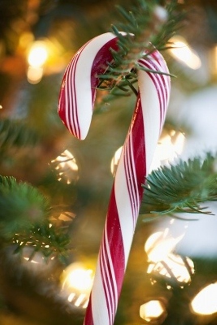candy canes can be used as Christmas ornaments and they will look all-natural and very traditional, fun and cool