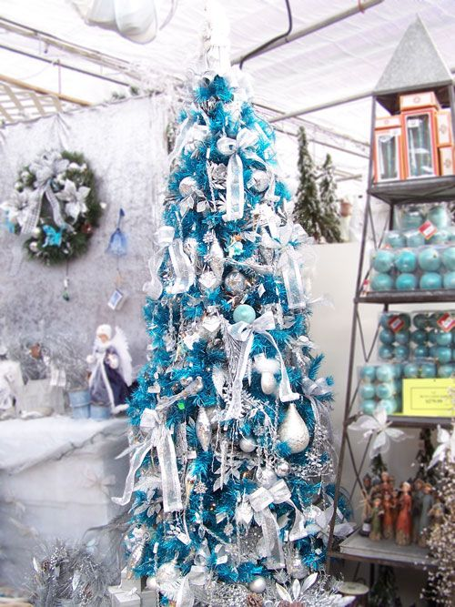 a gorgeous turquoise Christmas tree with ribbon bows, white and silver ornaments, branches and leaves is wow