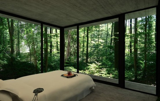 a small modern bedroom with a large bed, glass walls and gorgeous forest views is a lovely space to be